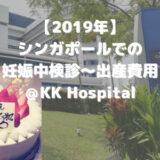 【2019年】シンガポールでの妊娠中検診〜出産費用@KK Hospital