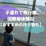 イヤイヤ期の子連れで飛行機国際線体験記【おすすめの持ち物も】