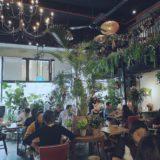 秘密にしたい自然派カフェ「Knots cafe and living」