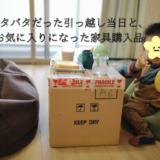 バタバタだった引っ越し当日と、お気に入りになった家具購入品
